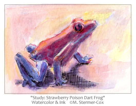 Why Paint? Strawberry Frogs?