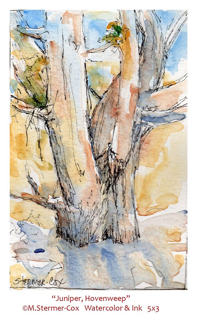 Travel Sketches: Juniper Hovenweep