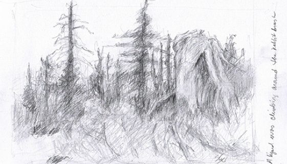 "Sketch from ""Hike & Learn"" Field Sketching Class"
