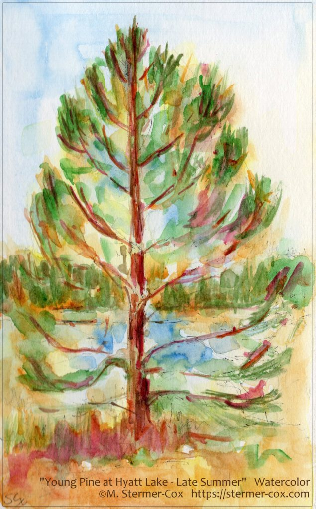 Contemplating Nature: Young Pine Hyatt Lake, Southern Oregon