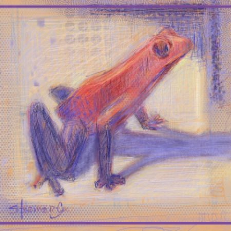 Struggling To Create: Strawberry Frog #2