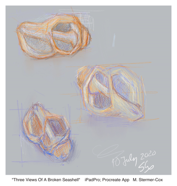 Five Minute Drawings: Three Views Of A Broken Seashell