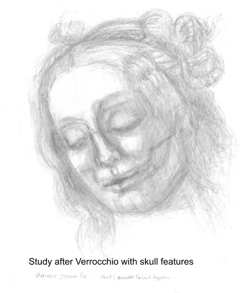 Building New Muscles: Learning to draw the skull and face